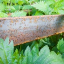 Nettles and rusty iron next to a tile wall CRW_2361.jpg