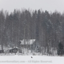 Photographing white tailed eagles on snowy lake CRW_1142.jpg