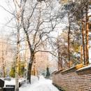 luminen_hautausmaa_snowy_graveyard_CRW_0581.jpg