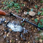 Hazel grouse catch and the winchester rifle .22 mag WMR lever action