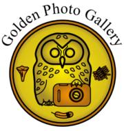 GoldenGalleryMedal