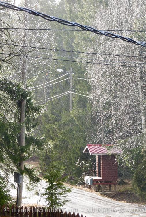 321218-190416-Shiny-spring-rain-in-countryside-CRW_4842.jpg