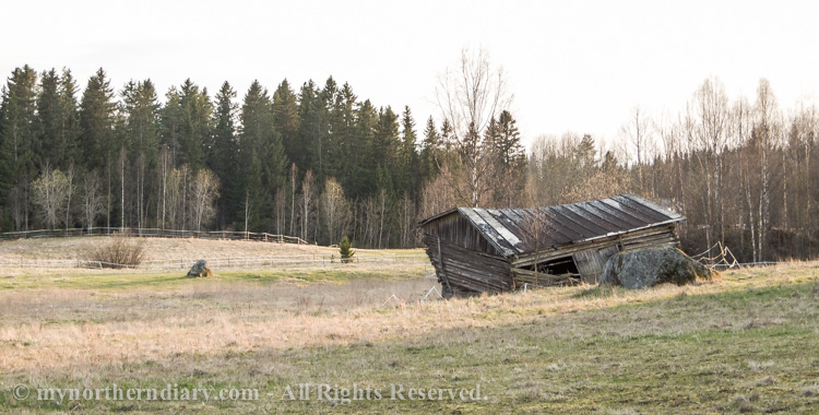 A-wreck-barn-in-field-CRW_2057.jpg