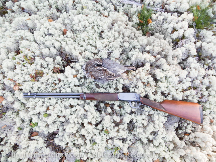 Hazel grouse shot with a Winchester WMR on white lichen