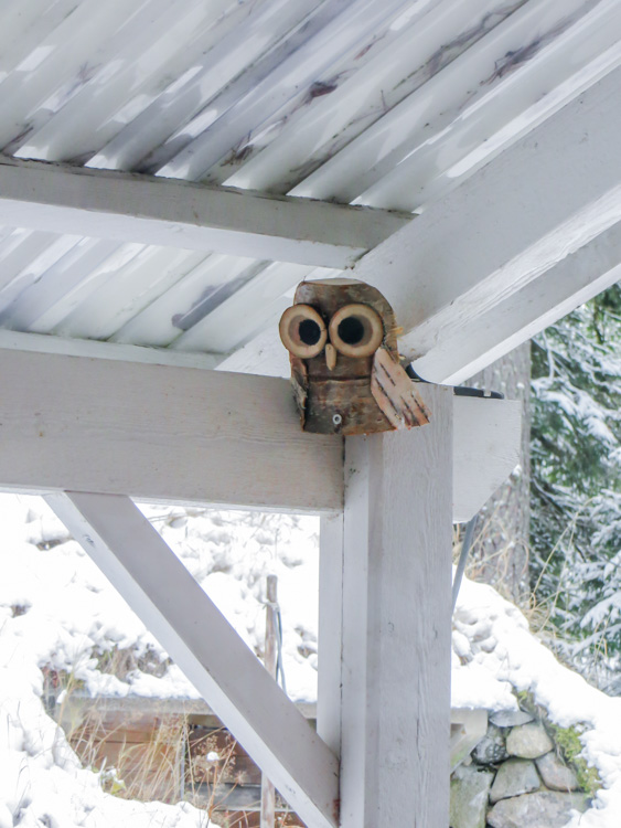 Diy-wooden-owl-made-to-scare-tits-from-terrace-IMG_5867.jpg