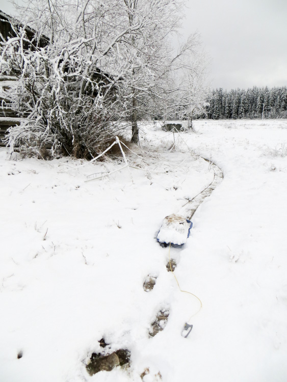 Dragging-heavy-sledge-to-make-snow-trails-for-hare-hunting-IMG_4628.jpg