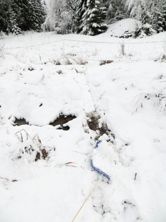 Dragging-heavy-sledge-to-make-snow-trails-for-hare-hunting-IMG_4629.jpg