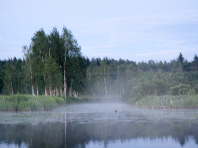 Mysterious-mist-floating-on-a-lake-during-night-IMG_0733.jpg