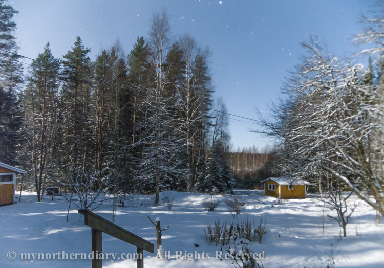 Nocturnal-images-of-log-houses-in-middle-of-cold-and-snowy-northern-forest-under-moon-light-CRW_5822.jpg