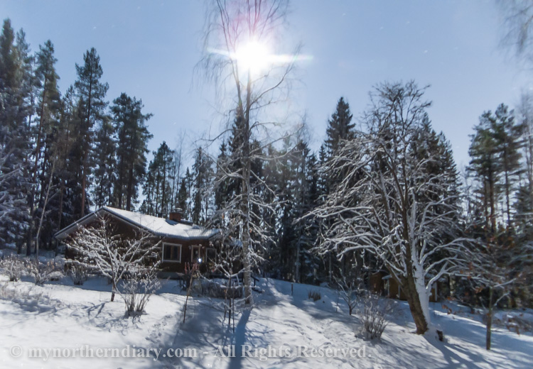 Nocturnal-images-of-log-houses-in-middle-of-cold-and-snowy-northern-forest-under-moon-light-CRW_5823.jpg