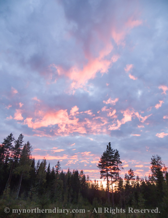 Pink-evening-clouds-over-Finnish-forest-CRW_4246.jpg