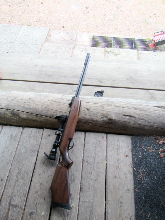 Shtooting-with-a-scoped-air-rifle-IMG_0581.jpg