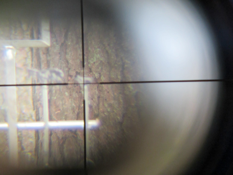 Shtooting-with-a-scoped-air-rifle-IMG_0583.jpg