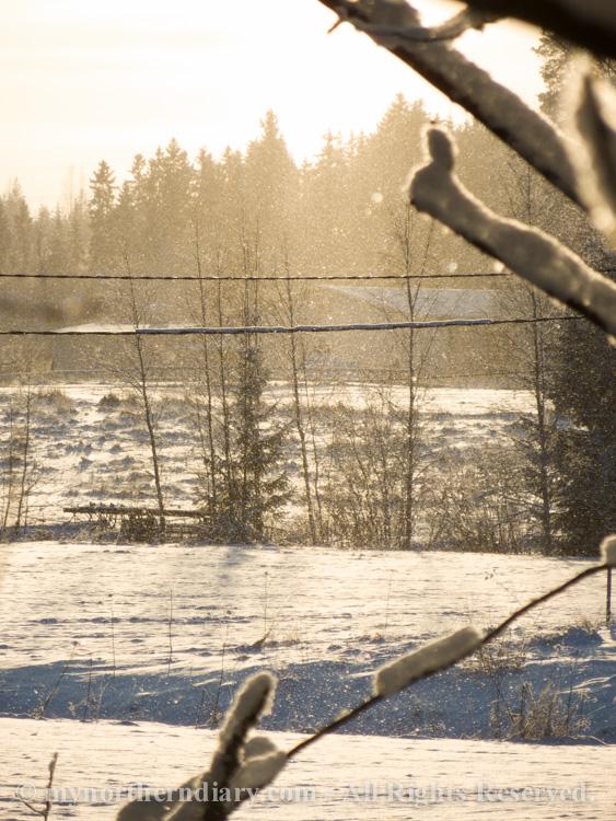 Snowy-and-white-countryside-CRW_4703.jpg