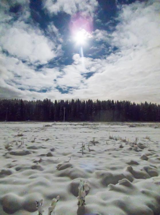 Snowy-night-in-field-CRW_4656.jpg