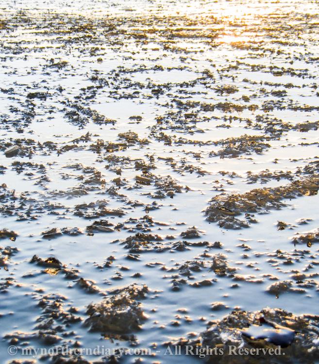auringonlasku, icy shore, jainen ranta, sunset_CRW_0736