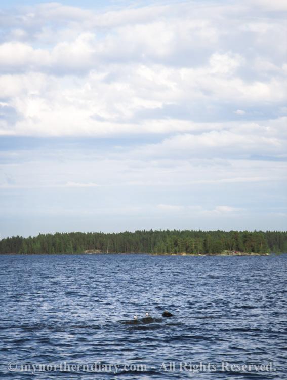 beautiful-sights-over-finnish-lake-CRW_0590.jpg