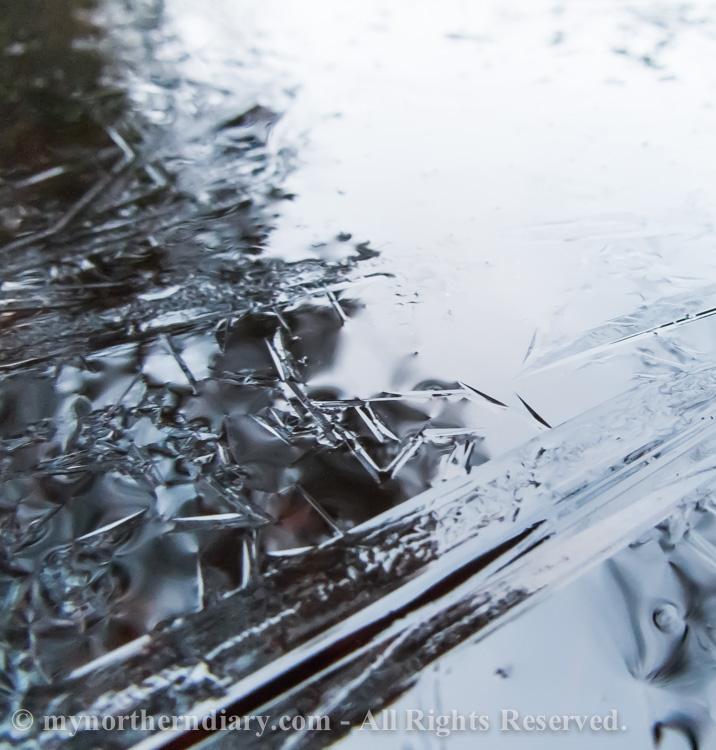 heikkoa jaata, thin ice_CRW_0229