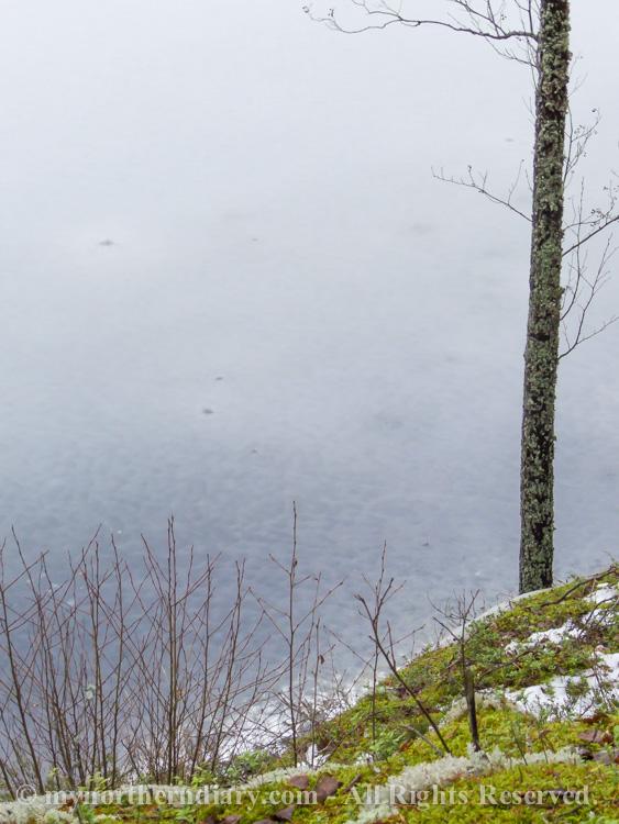 ice, icy lake, jaw, jainen jarvi