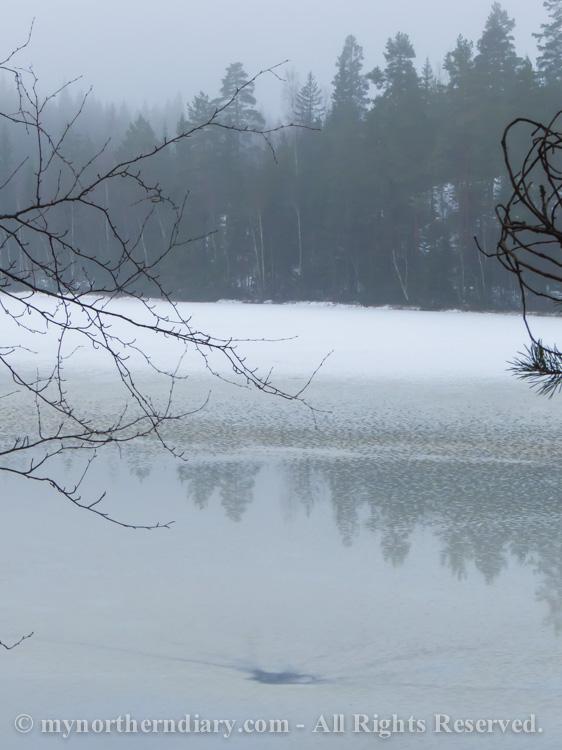ice_icy_lake_jaa_jainen_jarvi_CRW_1071.jpg