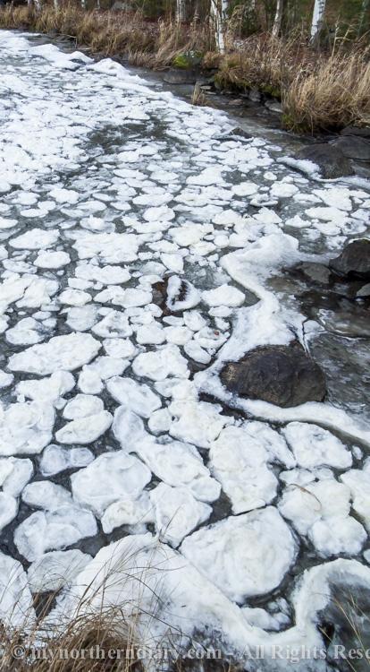 icy shore, jainen ranta, pancake ice, pienia jaalauttoja_CRW_0776