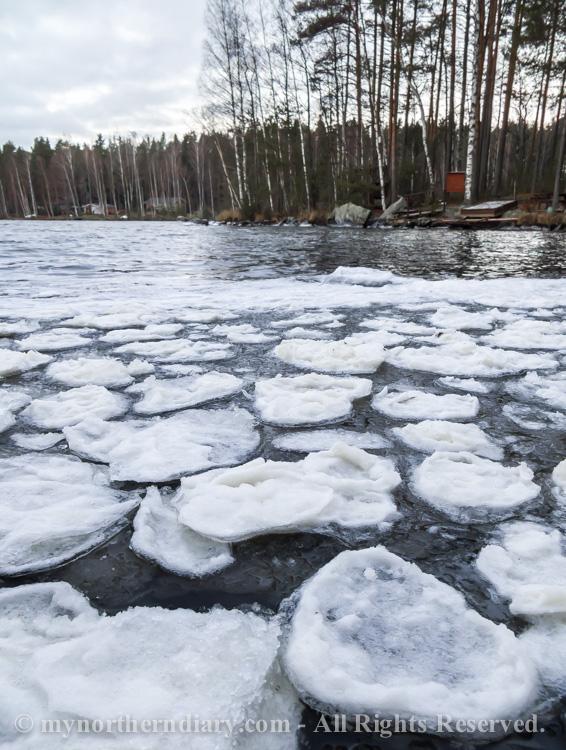 icy shore, jainen ranta, pancake ice, pienia jaalauttoja_CRW_0779