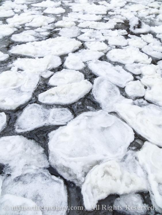 icy shore, jainen ranta, pancake ice, pienia jaalauttoja_CRW_0782