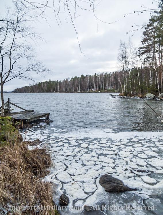 icy shore, jainen ranta, pancake ice, pienia jaalauttoja_CRW_0783