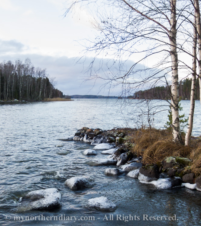 icy shore, jainen ranta_CRW_0763