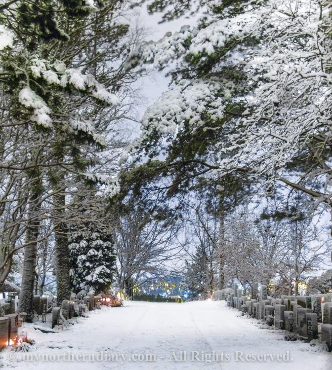 luminen hautausmaa, luminen kaupunki, night, snowy city, snowy graveyard, street lights, yo_CRW_0685