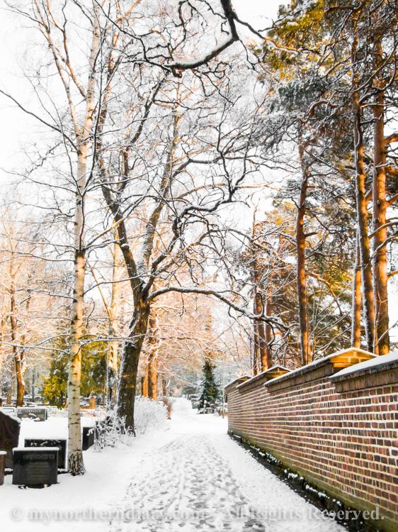 luminen hautausmaa, snowy graveyard_CRW_0581