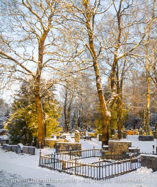 luminen hautausmaa, snowy graveyard_CRW_0583