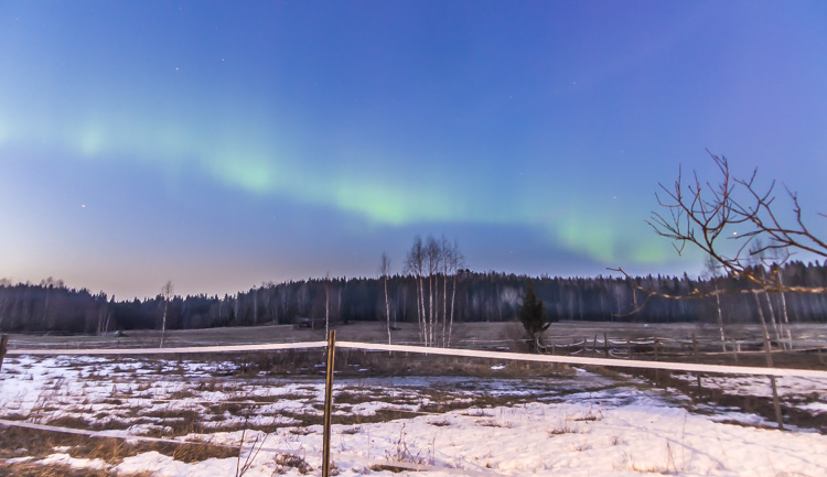 northern-lights-over-field-CRW_1534.jpg