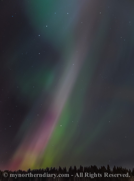northern-lights-over-field-CRW_1551.jpg