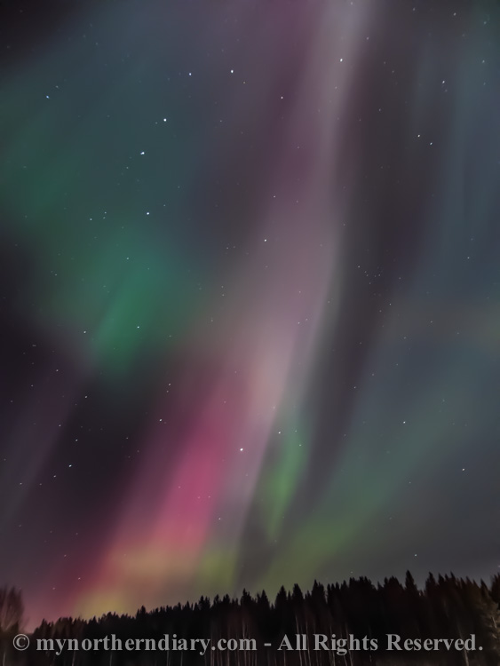 northern-lights-over-field-CRW_1553.jpg