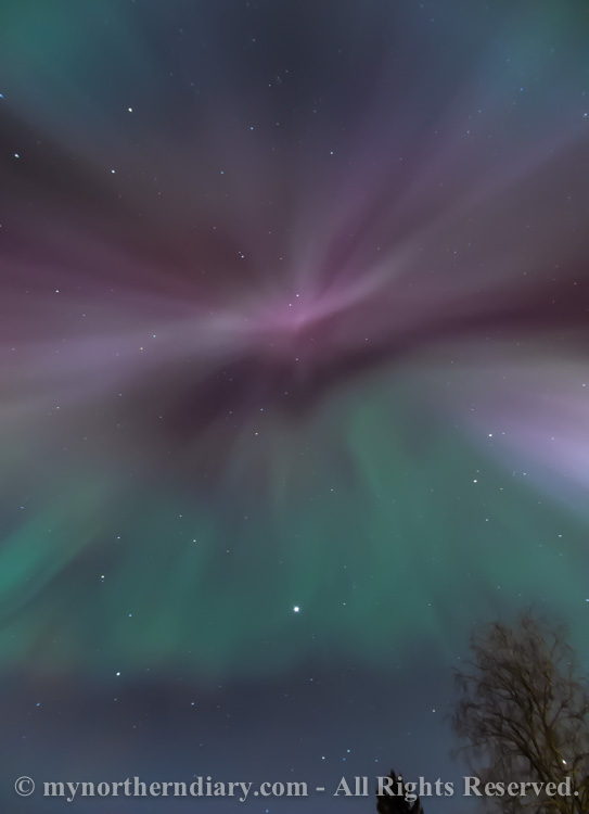 northern-lights-over-field-CRW_1557.jpg