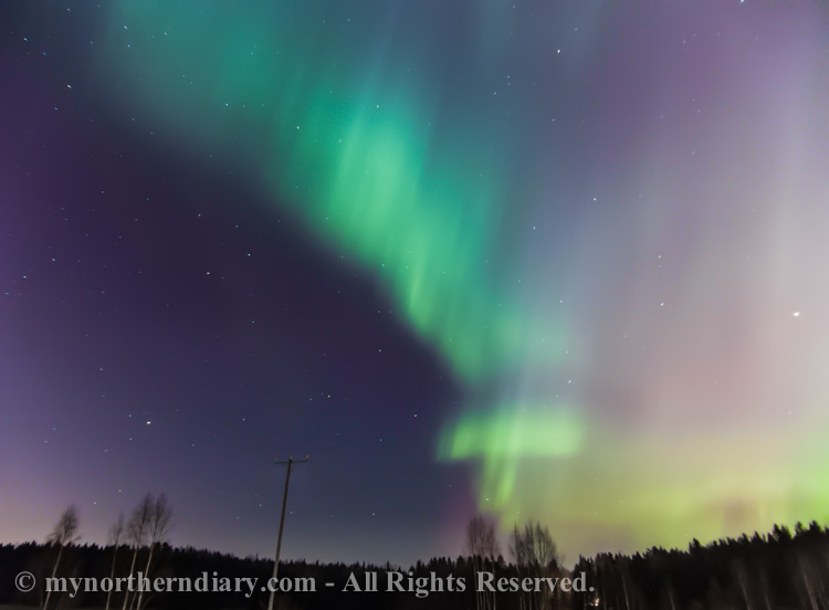 northern-lights-over-field-CRW_1559.jpg