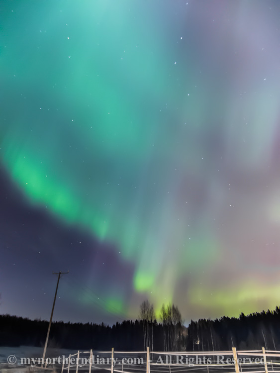northern-lights-over-field-CRW_1560.jpg