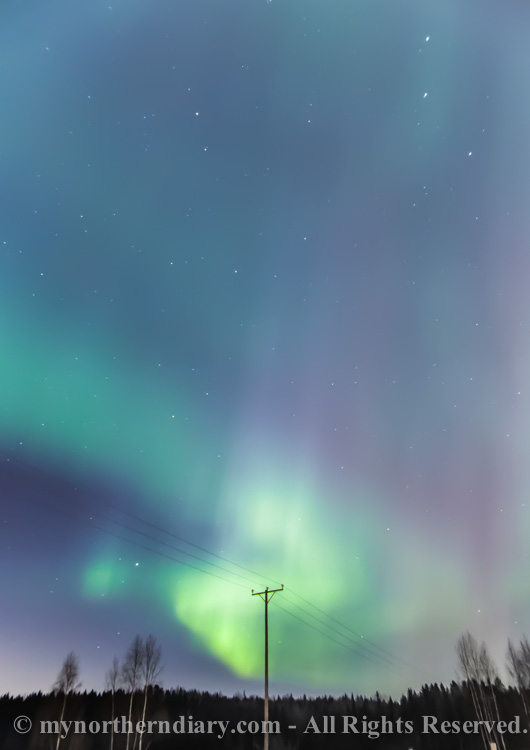 northern-lights-over-field-CRW_1562.jpg