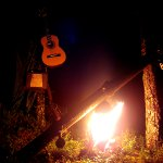A guitar hanging on a tree next to a campfire in a dark forrest.